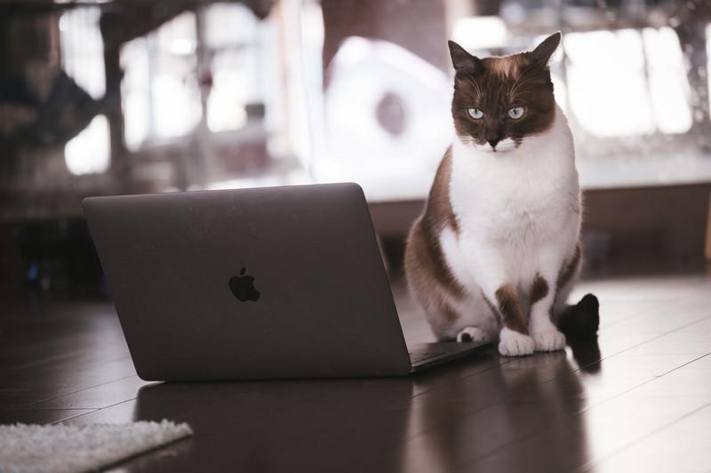 macbookproを安く買う